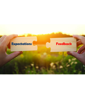Puzzle Pieces Expectations Feedback Leadquine